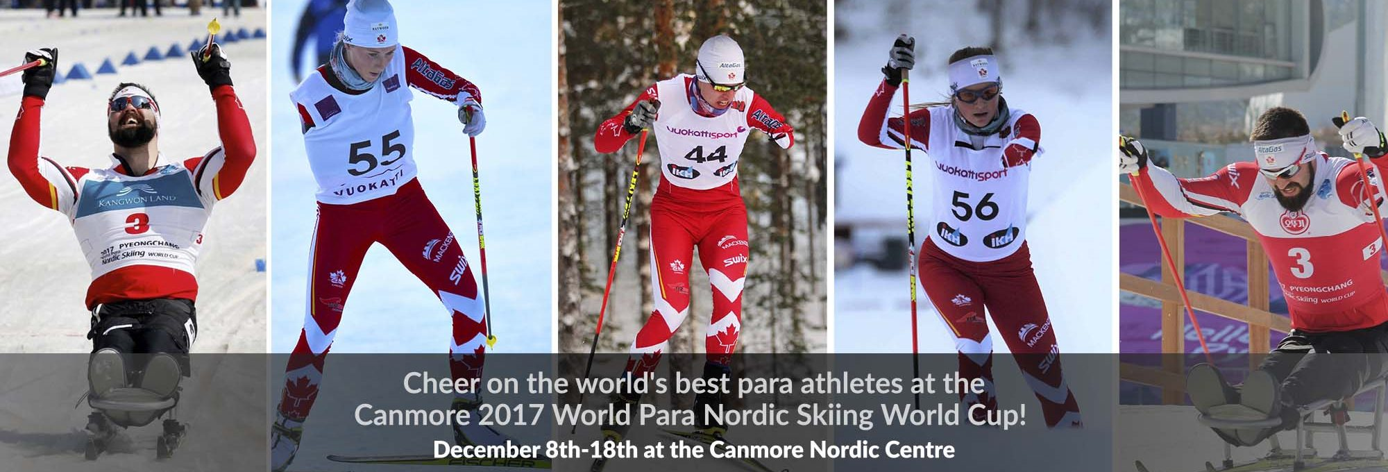 Image result for para nordic world cup canmore